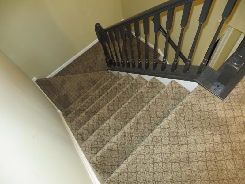 carpet_102