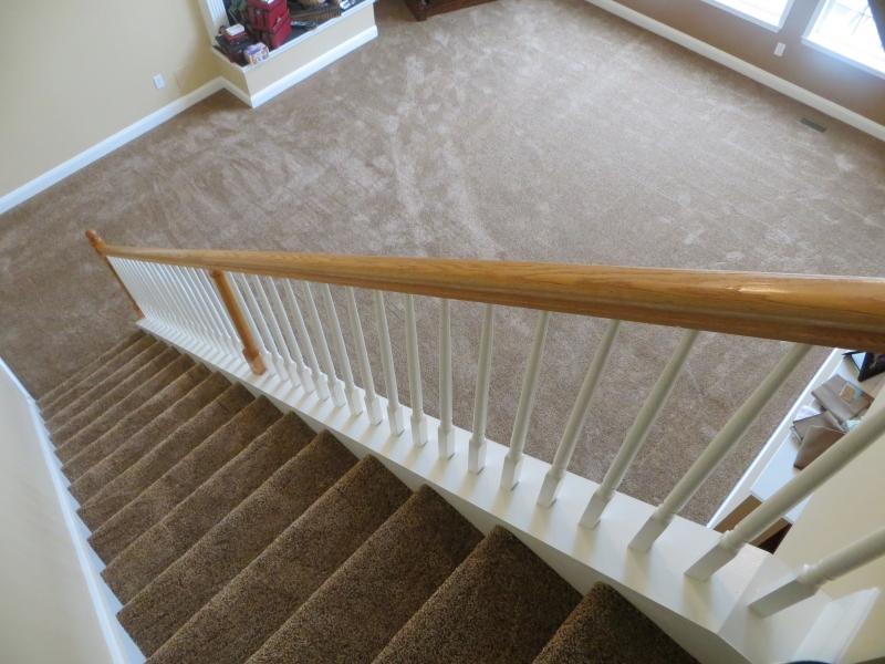 carpet_29