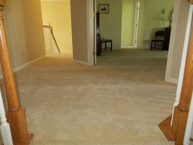 carpet_42