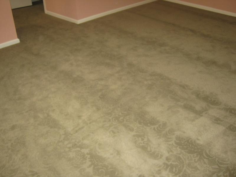 carpet_46