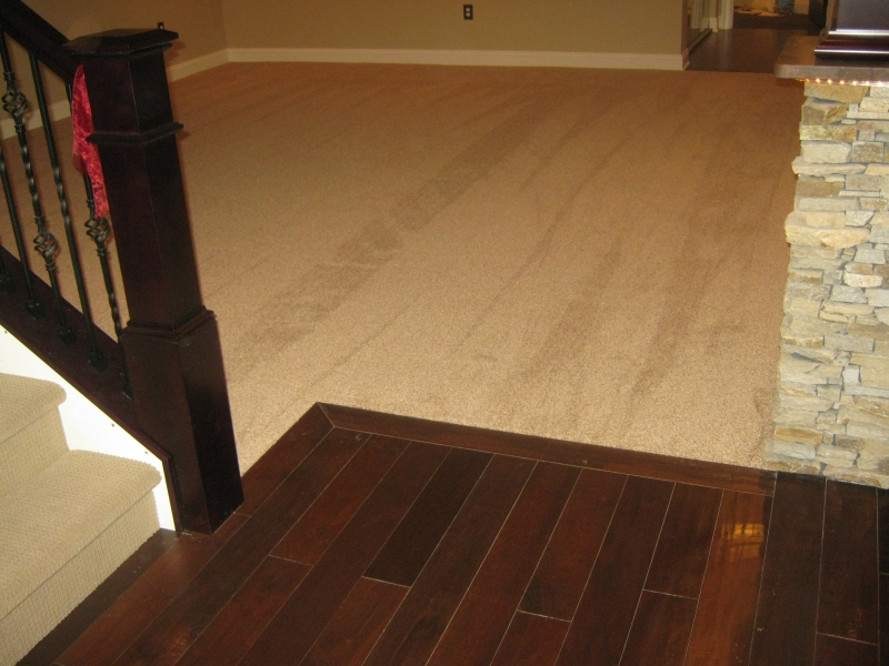 carpet_50
