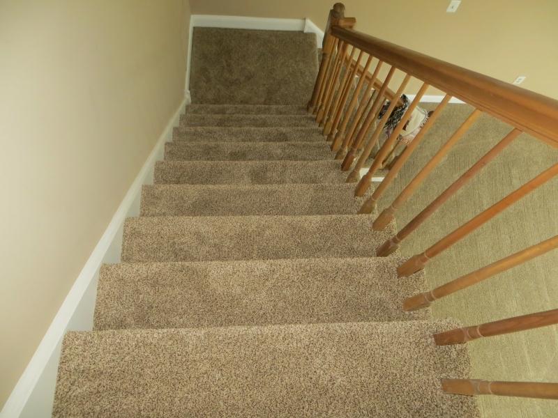 carpet_55