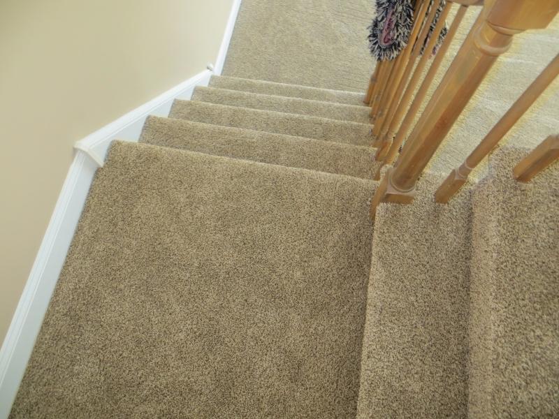 carpet_57