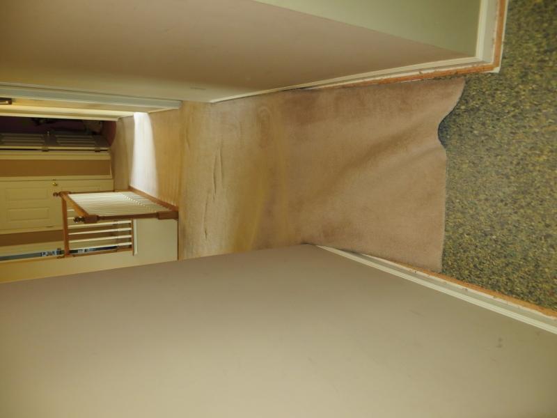 carpet_60
