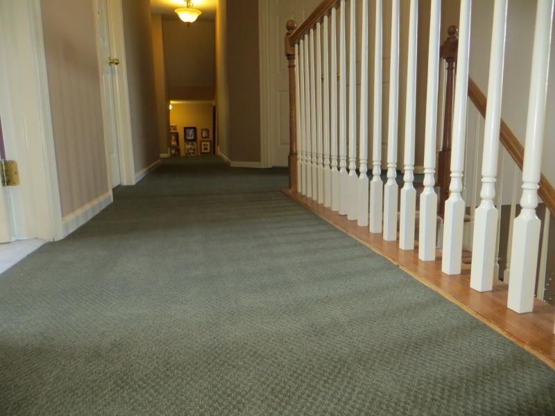 carpet_65