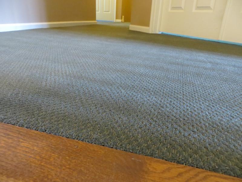 carpet_66