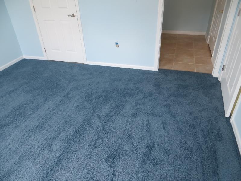 carpet_51