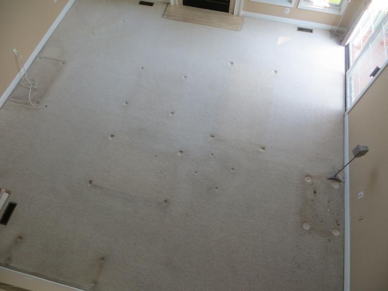 carpet_53