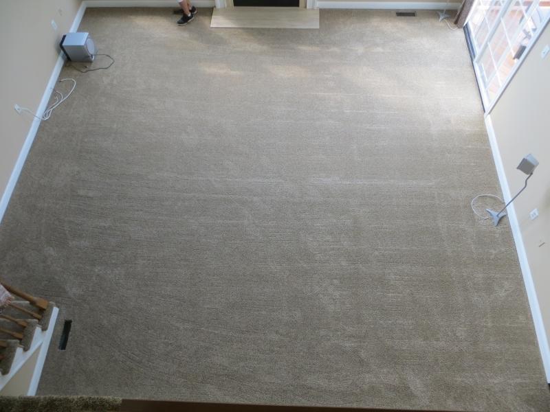 carpet_56