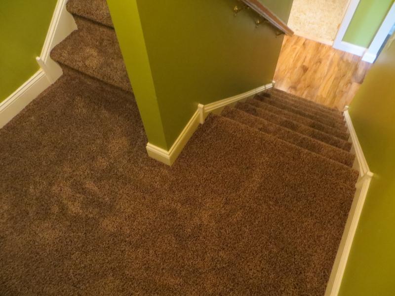 carpet_71