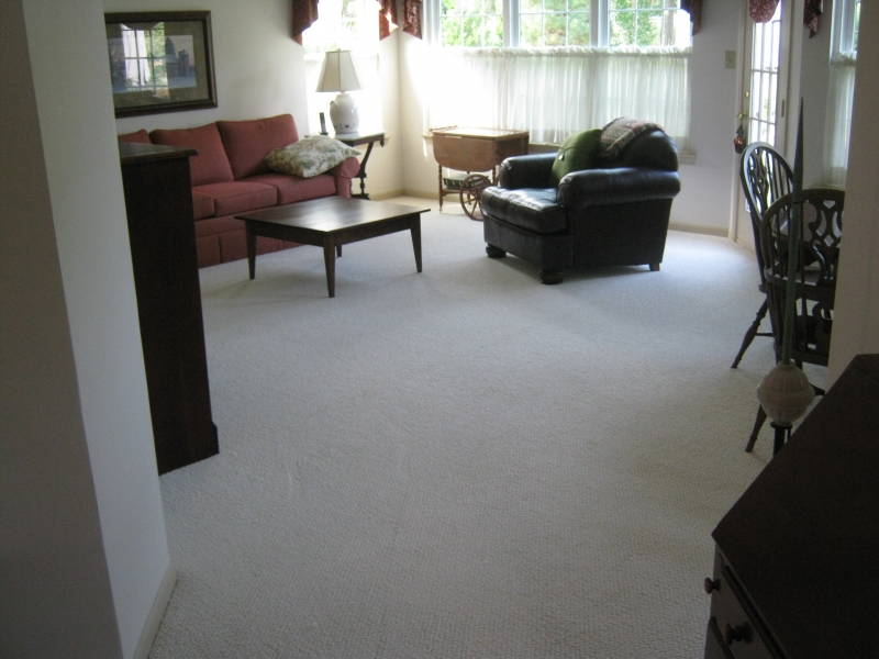 carpet_73