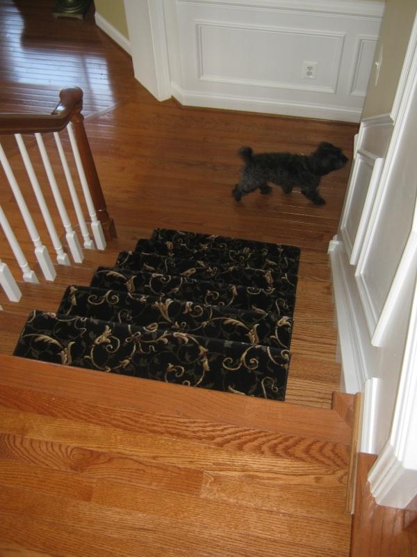 carpet_92