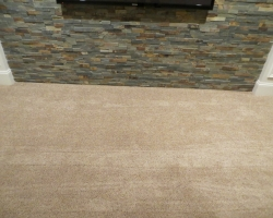 carpet_109