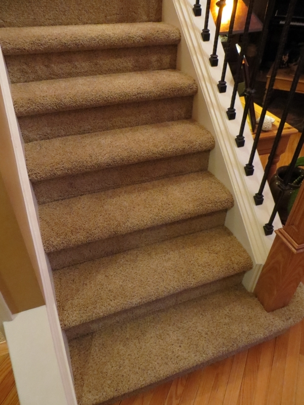 carpeted_stairs_14