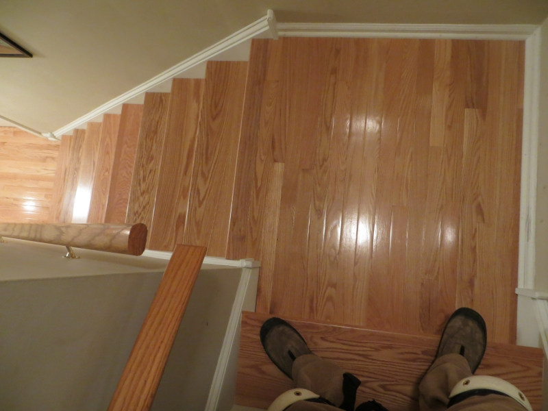 carpeted_stairs_2