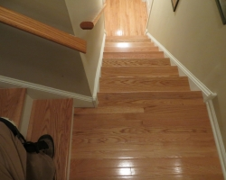 carpeted_stairs_1